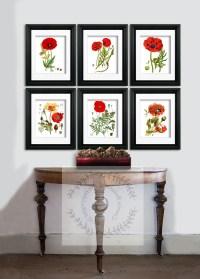 15 Best Collection of Framed Botanical Art Prints