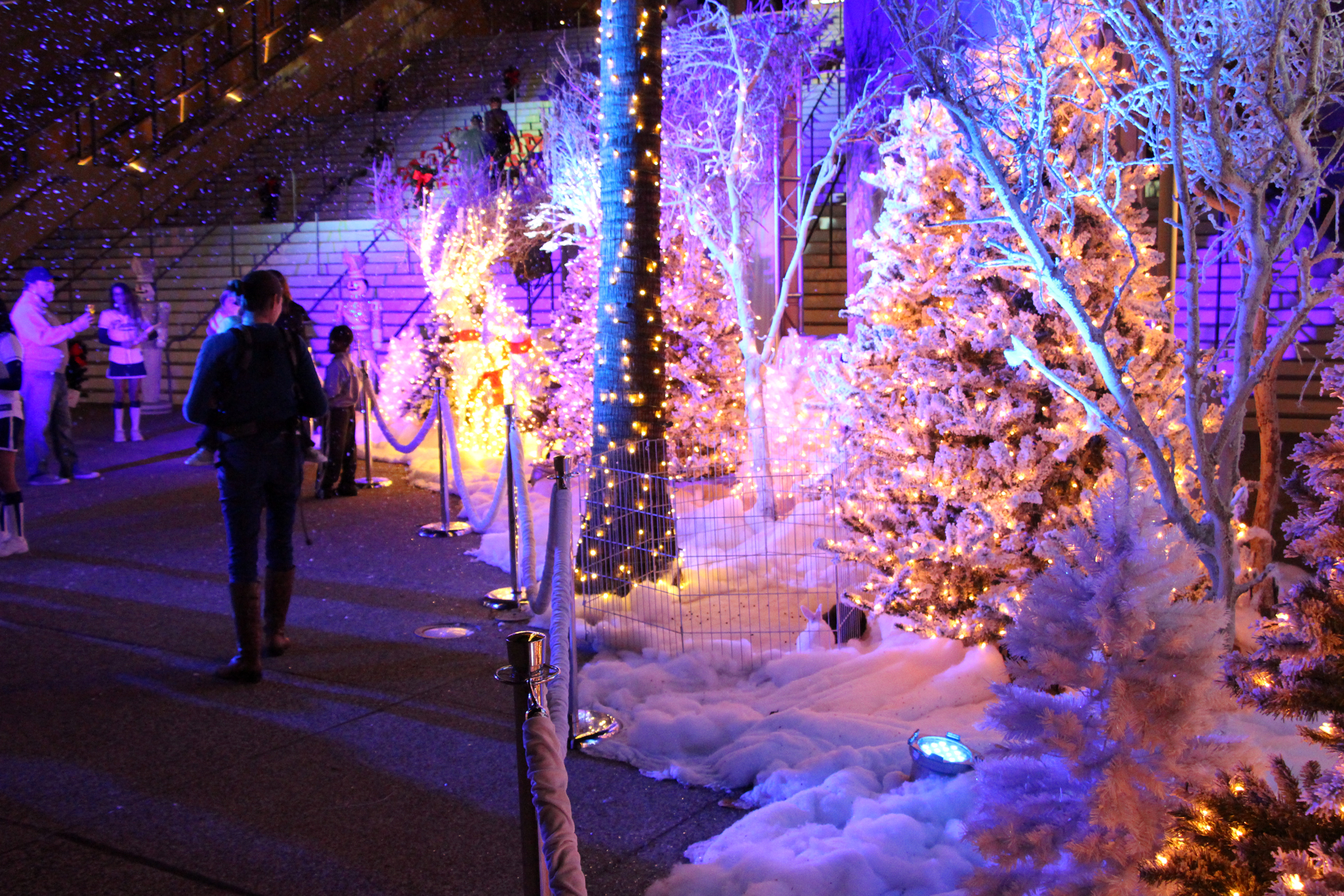 2015 Holiday Wonderland at Petco Park