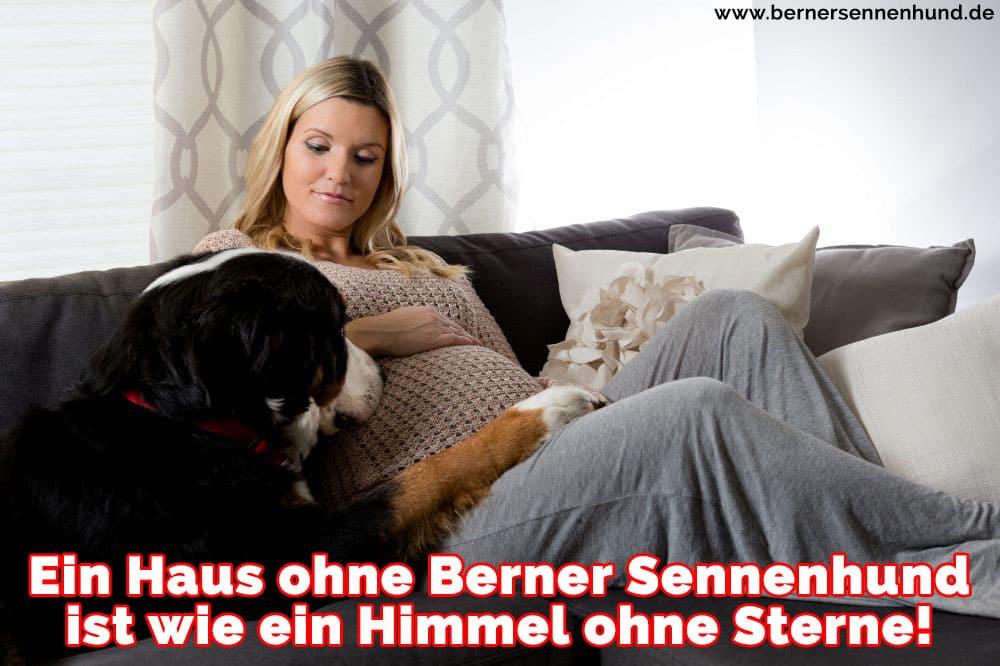 Eine Frau und ihre Berner Sennenhund sitzten auf dem Sofa