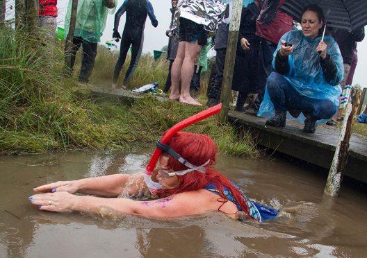mermaids in the bog