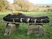 Woven raw fleece burial shroud