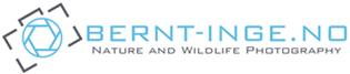 Bernt-Inge.no – Nature and Wildlife Photography