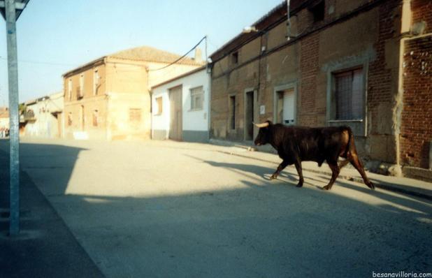 2004 Encierro (9)
