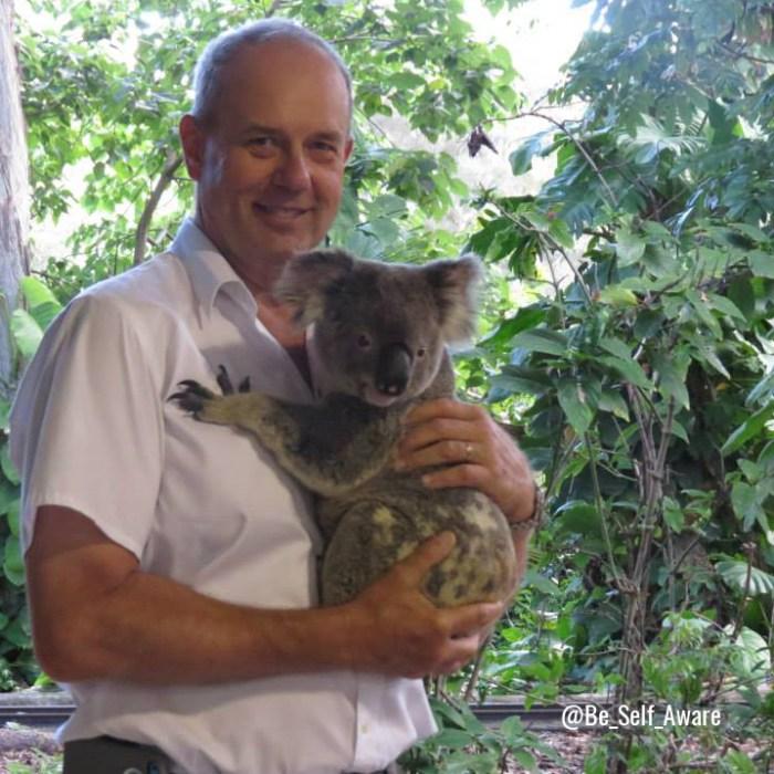 BSA 3 tues koala