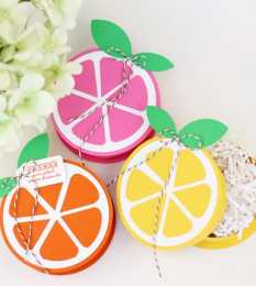 Citrus-treat-box-diy-favors