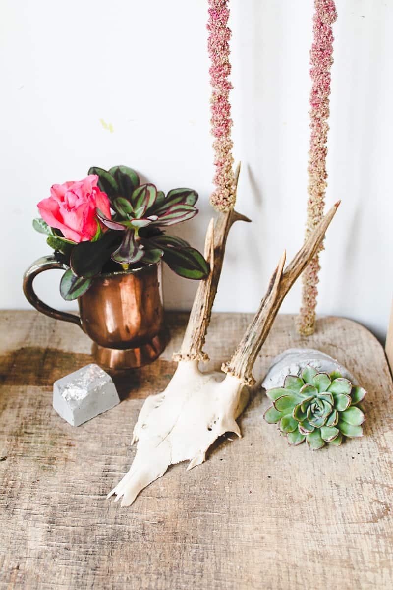 DIY Concrete Vase Silver Leaf Succulents-4