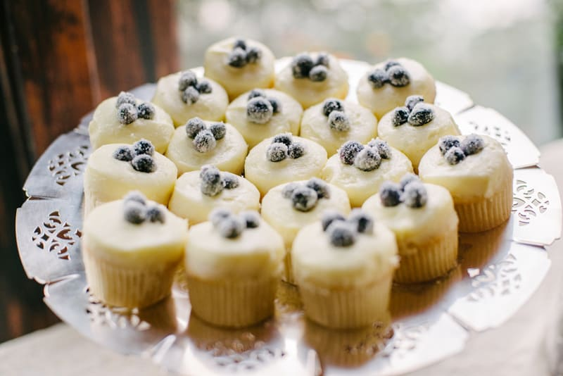 Frosted Blueberry Muffins - Meghan & Chuck