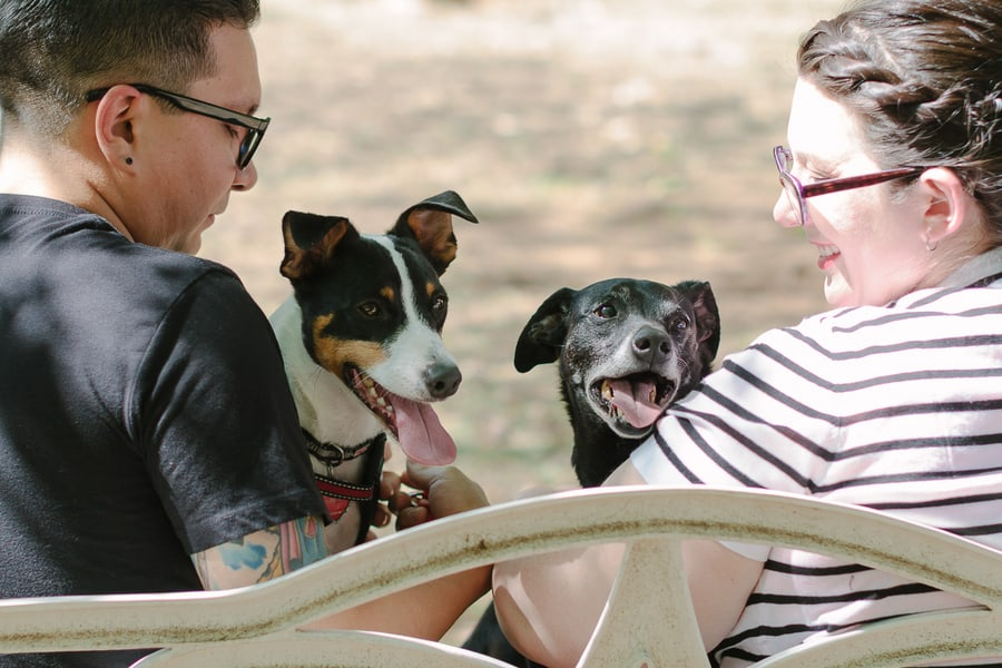 Quirky Engagement Shoot Librarian Fun Dogs Bike Ride 35