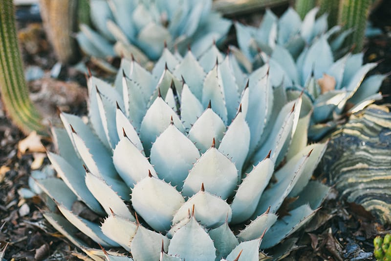 Bohemian Boho Wedding Inspiration Floppy Hat Bride Festival 21