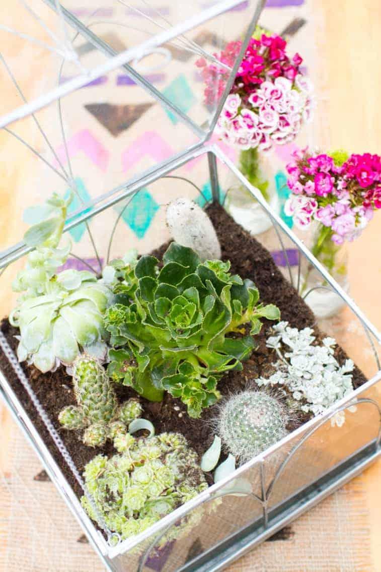 Make your own terrarium Centrepiece
