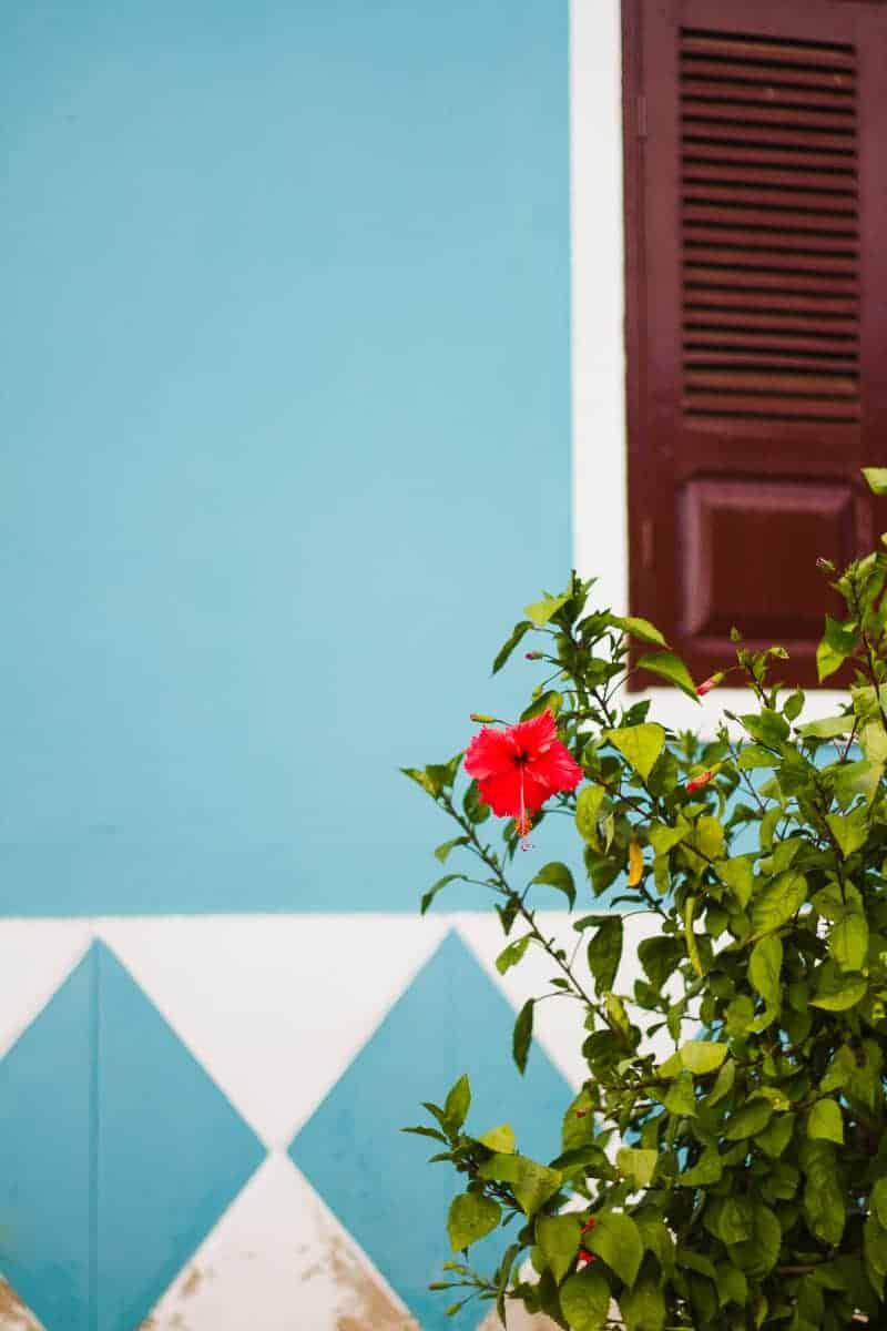 cape-verde-boa-vista-africa-travel-vacation-travel-guide-colourful-location-honeymoon-45