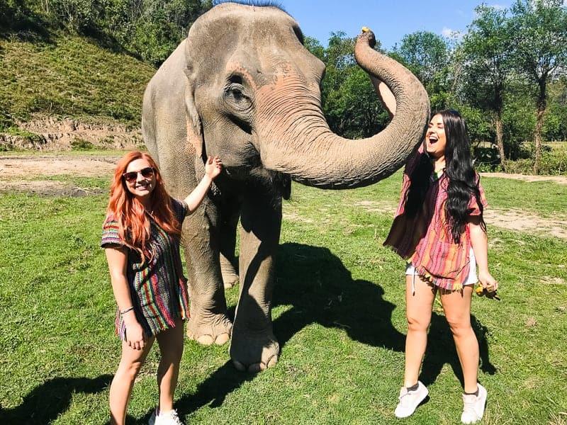 Elephant Jungle Santuary Chang Mai Thailand Ethical Sustainable Eco-Tourism Welfare-19