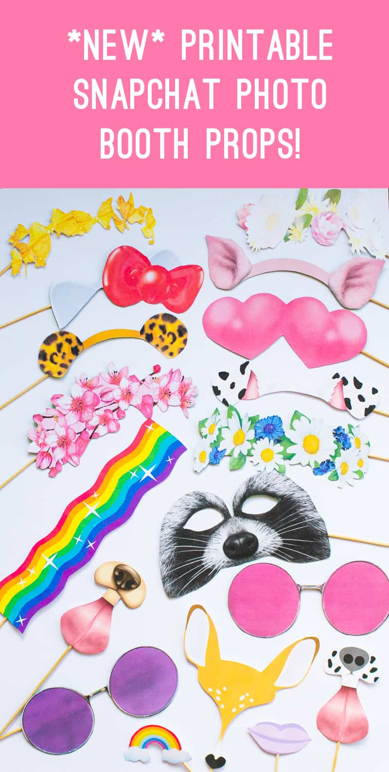 New Snapchat Filter Photo booth props Bunny Leopard ears hello kitty raccoon heart eyes flower crown glasses printable download- Main
