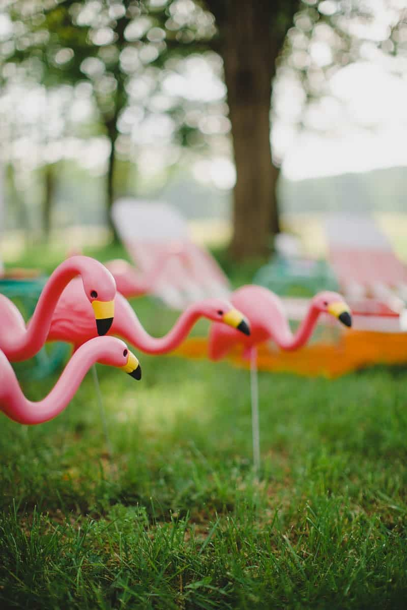 FLAMINGO THEMED ELOPEMENTS IDEAS IN A VINTAGE AIRBNB CAMPERVAN (11)