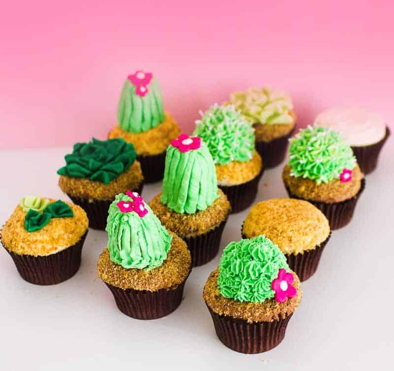 DIY Succulent Cactus Cupcakes Tutorial Cacti Fun Unique Terrarium Two Little Cats Bakery Greenery Green Spring Themed-15