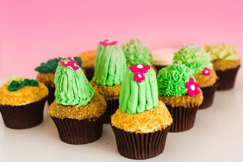 DIY Succulent Cactus Cupcakes Tutorial Cacti Fun Unique Terrarium Two Little Cats Bakery Greenery Green Spring Themed-21