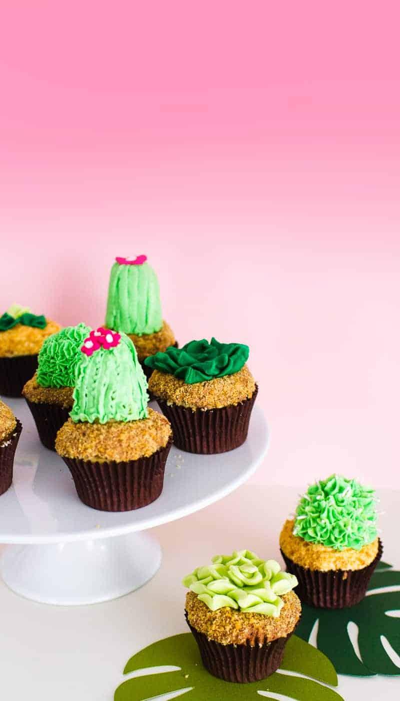 DIY Succulent Cactus Cupcakes Tutorial Cacti Fun Unique Terrarium Two Little Cats Bakery Greenery Green Spring Themed-6