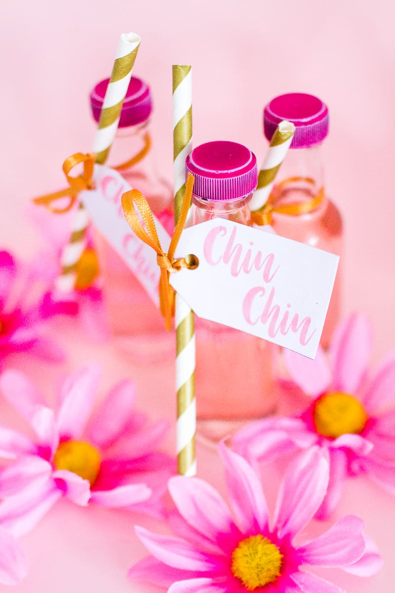 DIY PINK GIN WEDDING FAVOURS WITH FREE PRINTABLE TAGS | Bespoke ...