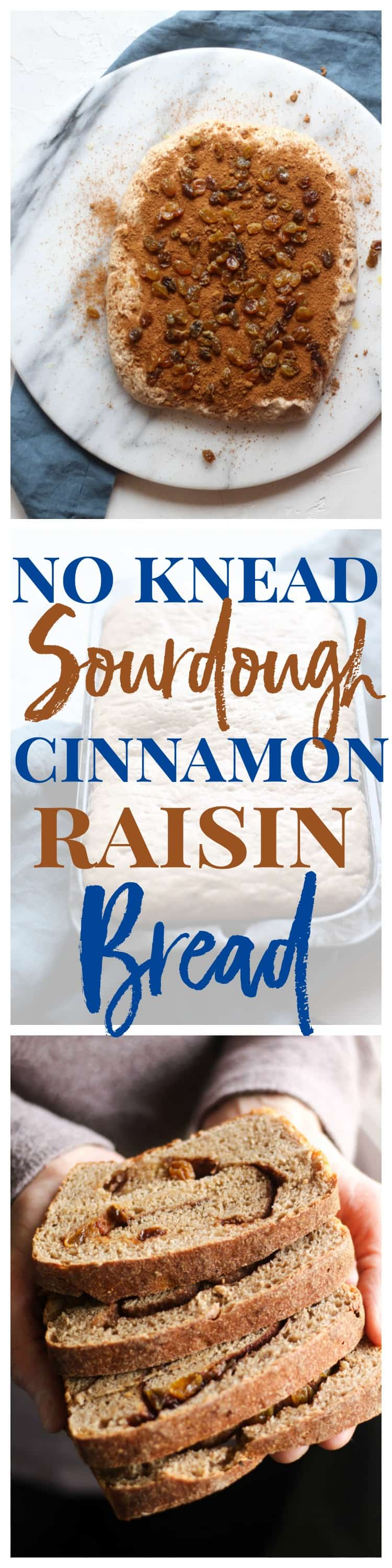 This no knead cinnamon raisin bread