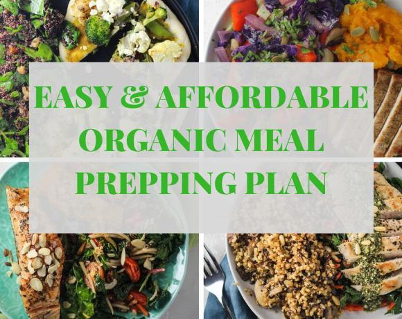 EASY, AFFORDABLE, & DELICIOUS ORGANIC MEAL PREPPING | GREEN CHEF