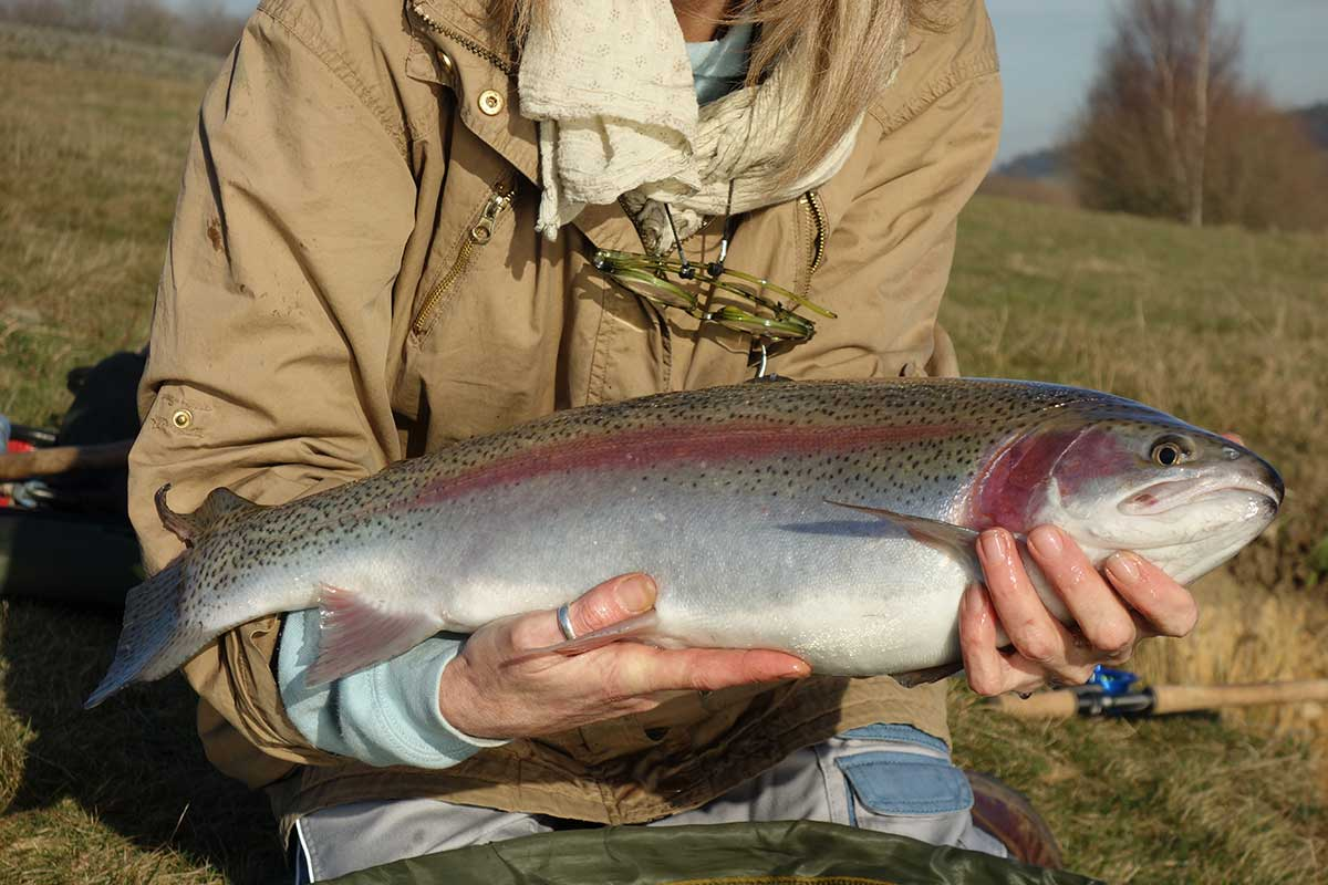 Catch your own trout at Bessy Beck.