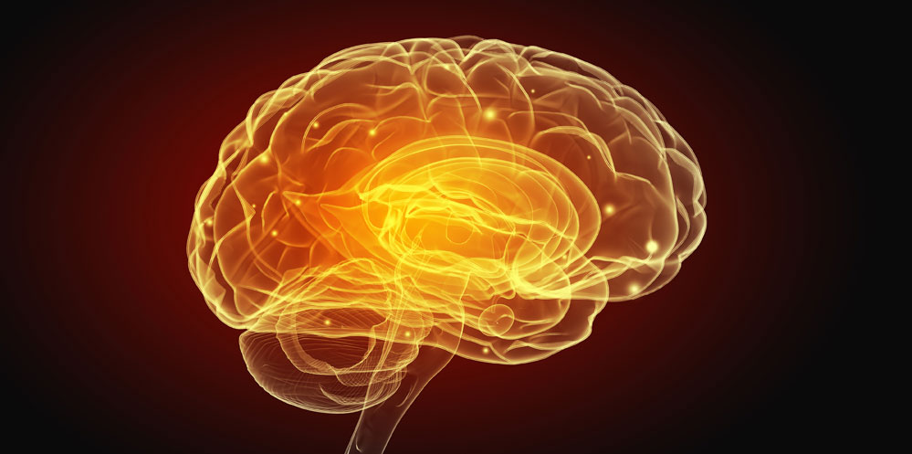 Leaky blood brain barrier responsible for Alzheimers