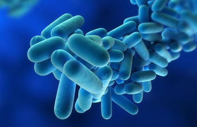 Un investigador español hizo un hallazgo clave para combatir la Legionella