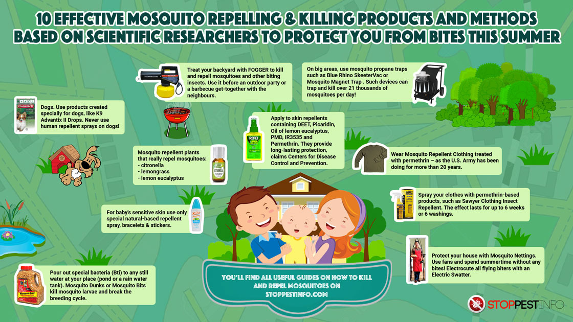 How to Get Rid of Mosquitoes {Infographic} - Best Infographics