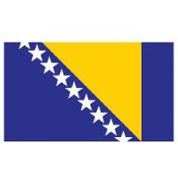 Best money transfer service to Bosnia and Herzegovina