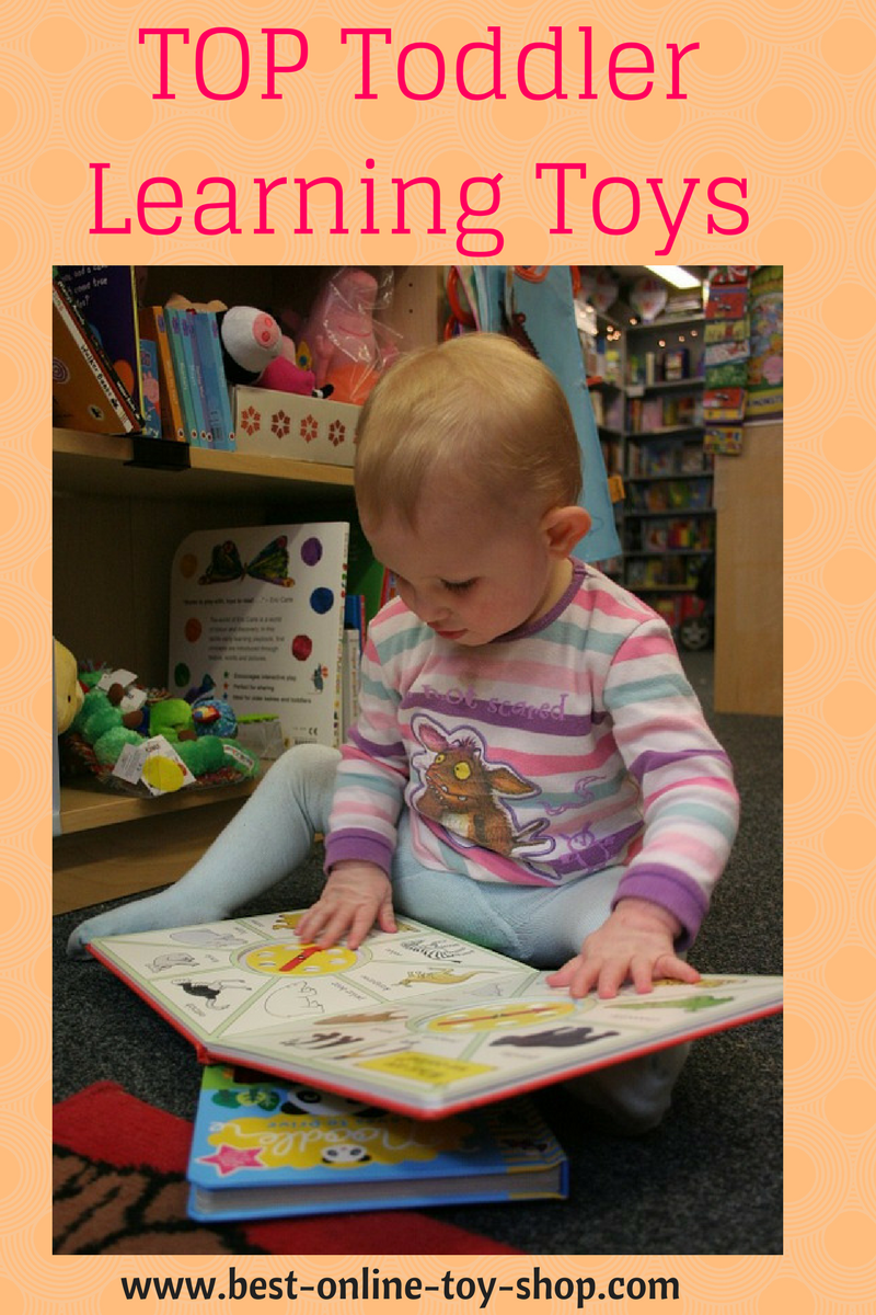Toddler Girl Learning Toys : Top learning toys for toddlers developmental and
