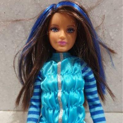 Latest Barbie Dolls With Black Hair
