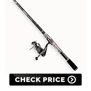 Best Fishing Poles for Beginners 2019