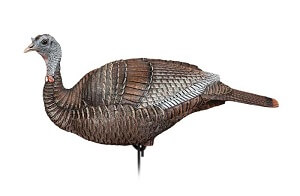 Dakota turkey decoys