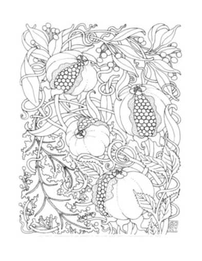 complex-coloring-pages-fruits