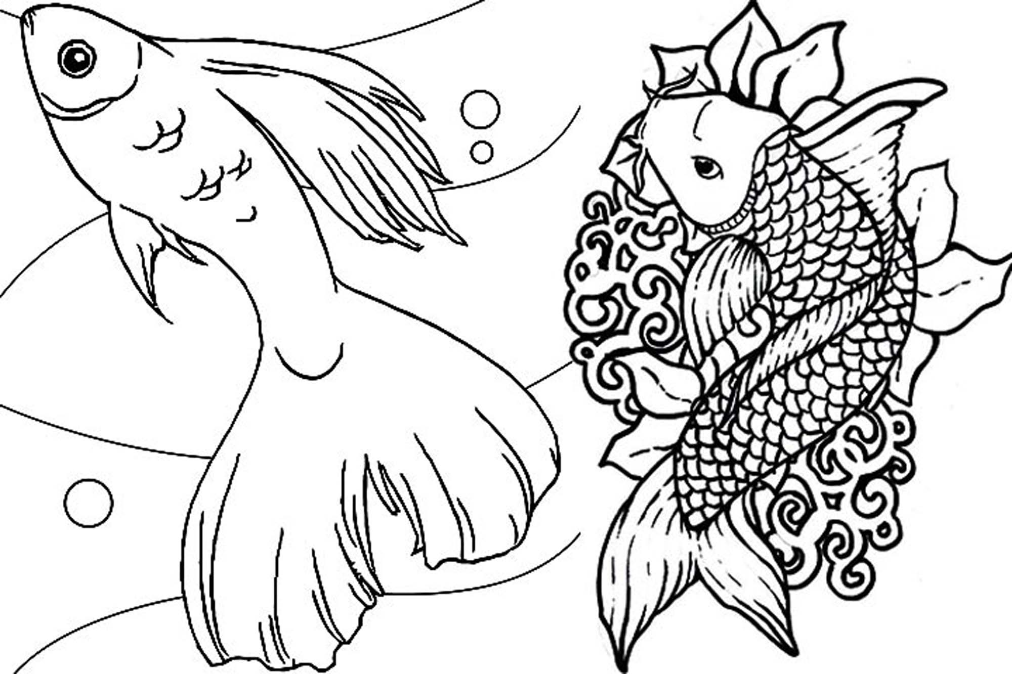 Fish Coloring Pages For Adults Bestappsforkids