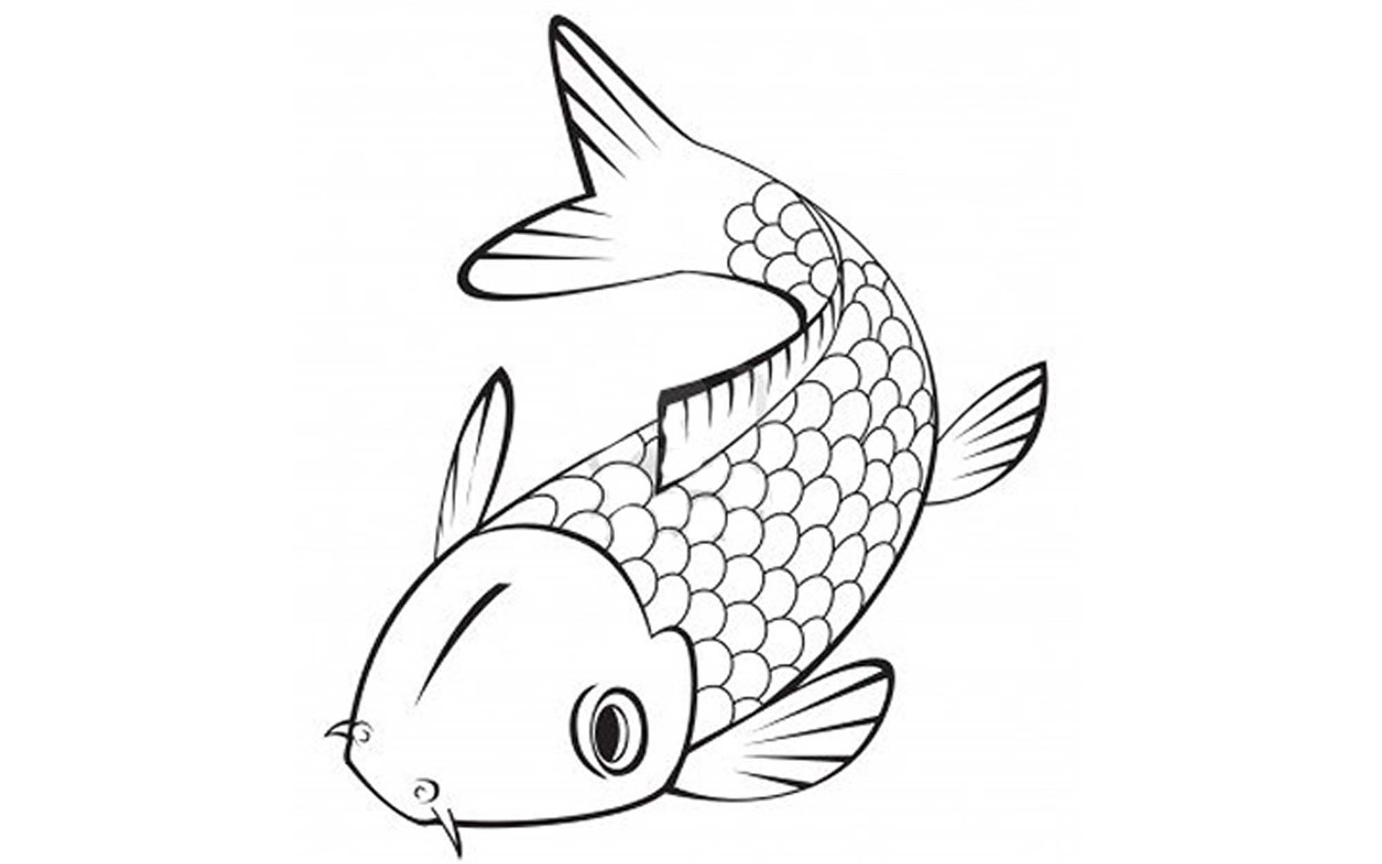 It is a photo of Irresistible Printable Fishing Coloring Pages