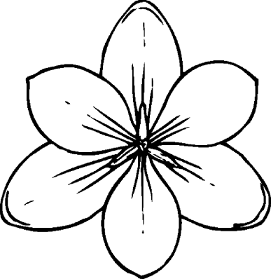 free-flower-coloring-pages-for-adults