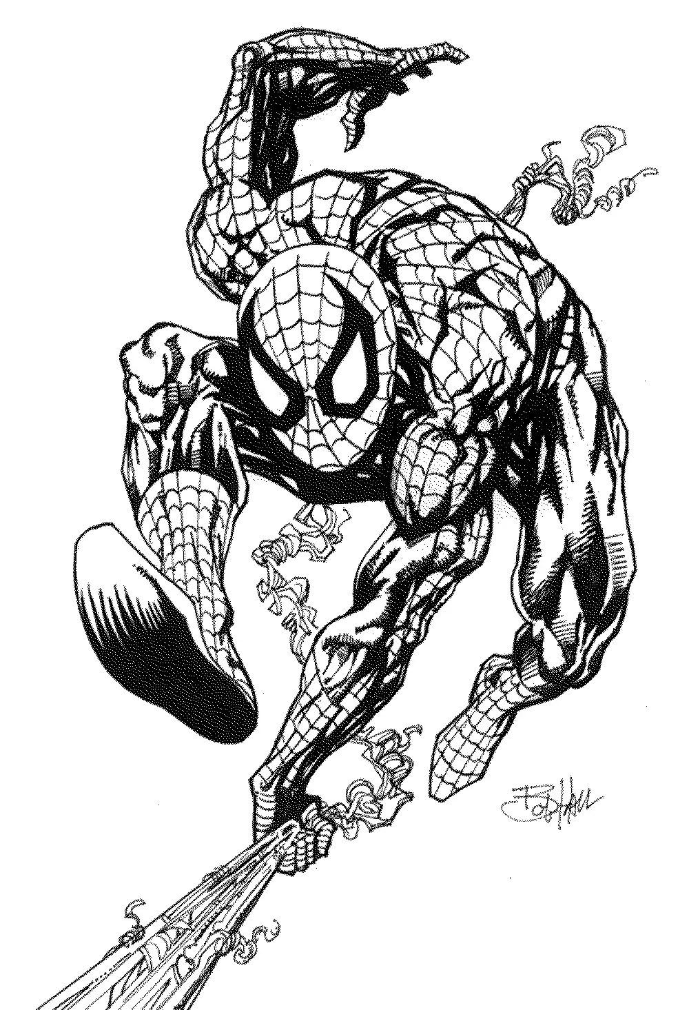 Print amp Download Spiderman Coloring