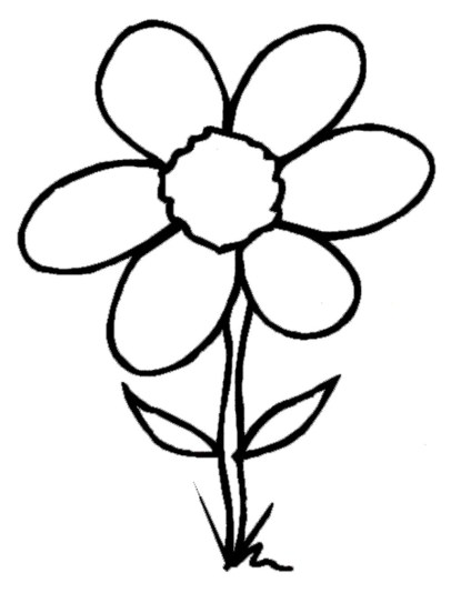 hawaiian-flower-coloring-pages