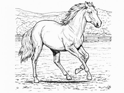horse-coloring-pages-for-kids