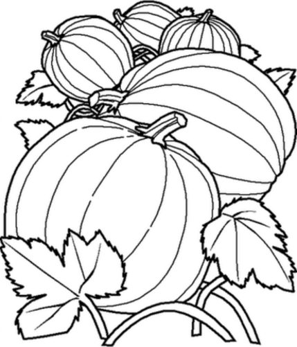 printable-pumpkin-coloring-pages-giant