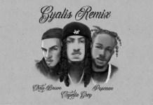 Capella Grey - Gyalis (Remix) Ft. Chris Brown & Popcaan