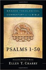 Brazos Bible commentary