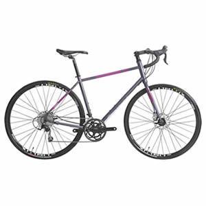 FitWell Bicycle Company Fahrlander II