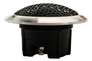 ARC Audio RS Speaker