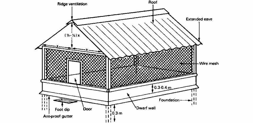 Free Chicken House Design & Installation Video