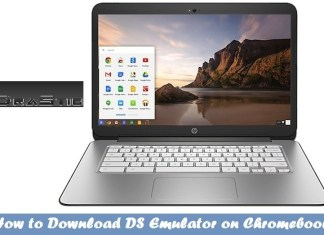 DS Emulator for Chromebook