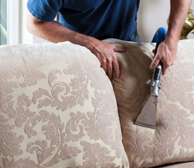 natural sofa deodorizer knislinge manual upholstery cleaning we can also eliminate odours with our all deodorizers including benefect and tea tree oil melaleuca alternifolia