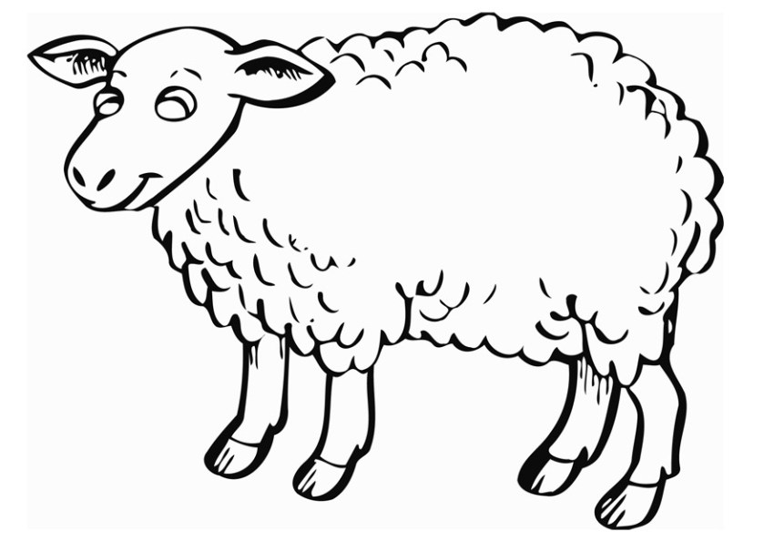 free printable sheep coloring pages for kids