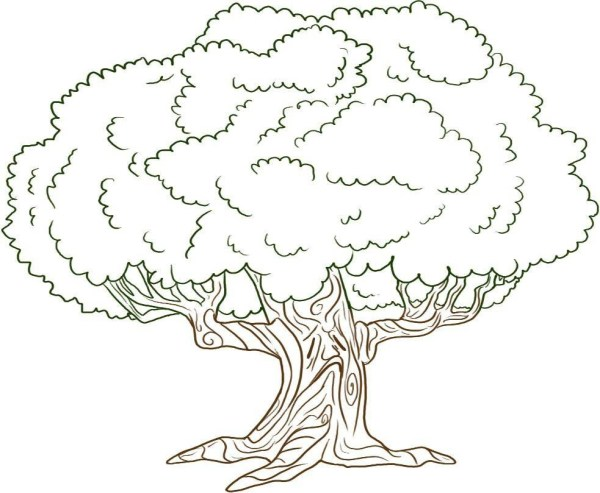 coloring pages of trees # 10
